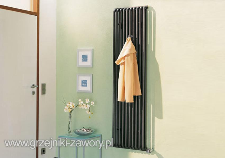 decor kermi decor s 600 x 1104 typ 21. Black Bedroom Furniture Sets. Home Design Ideas